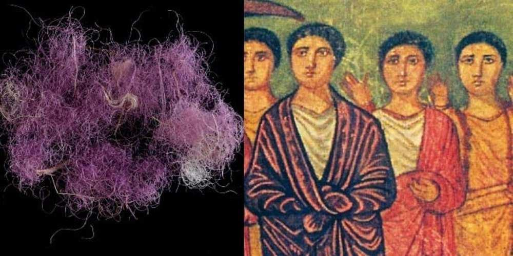 8 3000yo true purple fibre